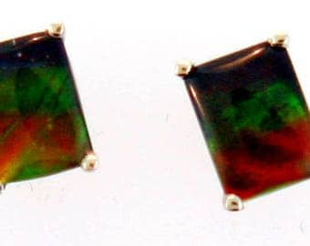 Pair of Large Emerald Cut Canadian Ammolite set in 14k White Gold