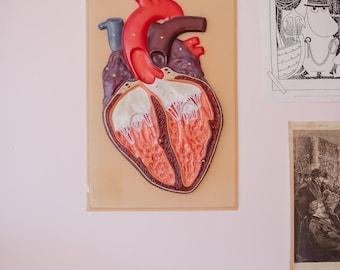Vintage funky anatomic plastic 3D poster heart