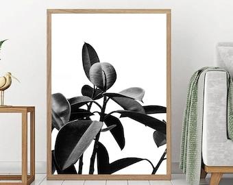 Scandinavian Wall Art, Leaf Print, Botanical Wall Art, Instant download, Plant Photography, Monochrome home decor, Affiche Scandinave, Chic