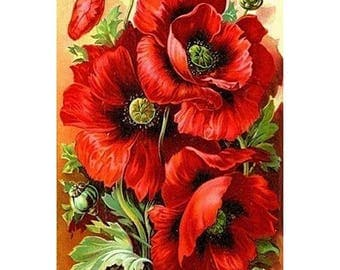 5D DIY Diamond Painting Red Poppies Cross Stitch Full Square Drill 3D Diamond Painting kit Sticker Home Decoration Gift