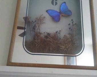 Vintage Butterfly Mirror Clock