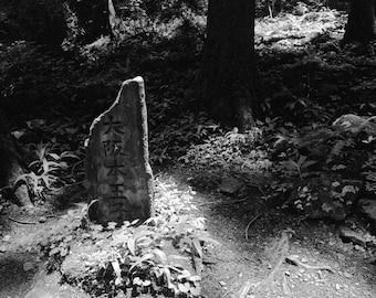 Oji - Kumana Kodo Pilgrimage Between Takahara and Hongu