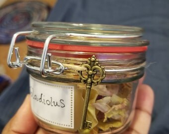 Medium Wiccan herb jars