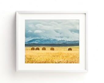 "hay field, mountains, landscape, landscape photograph, large art, large wall art, canvas art, large canvas art, nature -""Clash of Seasons"""