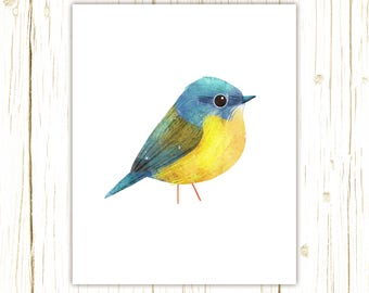 Eastern Yellow Robin Print -- bird art -- colorful bird art by stephanie fizer coleman illustration