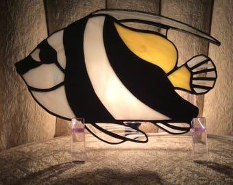 Angel Fish Nitelite