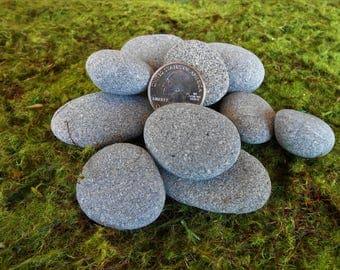 Craft Rocks for Painting, Pebble Art, 12 Pieces, 1 to 2 Inches, Rocks, Pebbles, Miniature Garden, Fairy Garden, Stones, Stone,Rock