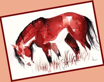 Bay Overo Pinto Mustang Wild Horse Art Horse Print Equine Art Pinto Horse Lover Pinto Horse Gift Mustang Gift Horse ACEO Art ACEO Horse