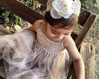 Blush Sparke Magic flower girl dress French lace and tulle dress for baby girl princess dress tutu