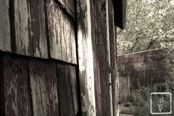 """Barn Corner,"" Greenlawn, New York, 2016."