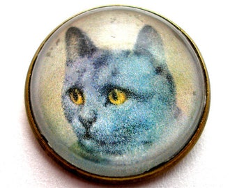 "Russian Blue Cat, domed glass studio button, 3/4"", 22mm. handmade. Vintage style."