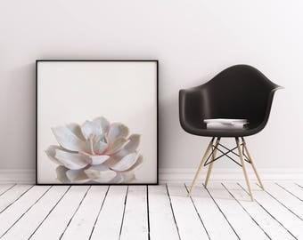 Succulent Art, Botanical Art, Gift for Gardener, Minimal Pastel Kitchen Wall Decor - Pink Succulent