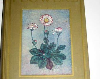 Vintage British Children's Book - Flowers Shown to the Children