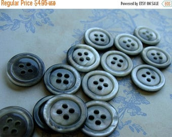 ONSALE One Dozen Vintage Grey Plastic Buttons Rainfall Collection
