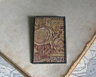 Sepia Rose Catalog 1903 Pin Glitter Glass Jewelry
