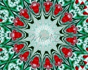 Red, Green, and White Kaliedoscope Poster Print