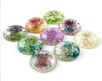 5 pcs 25 mm Dried Flowers Resin Cabochons