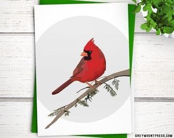 Northern Cardinal bird cards. Beautiful bird holiday cards. Blank bird cards. Cardinal cards. Bird Christmas card. Cardinal Christmas cards.