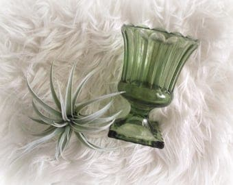 Avocado Green Vase Indiana Glass Pedestal Compote