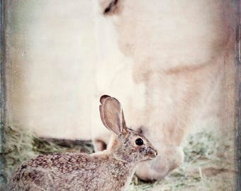 Nursery horse print, print nursery rabbit, farm animal print, horse nursery print, rustic nursery print, nursery decor, rustic, ethereal