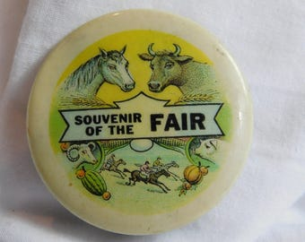 Antique Pin Pinback Button Souvenir of the Fair dr52