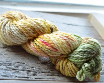 Hand-Dyed Superwash Merino and Nylon 2-ply Super Bulky Weight Yarn - Prickly Pear