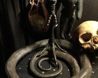 Large Voodoo Protection Claw Foot in Primitive Antique Box  - Ward Off Evil
