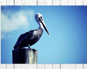Nautical Decor | Minimalist Art Print | Grey Pelican Print | Beach Photography | Shore Bird Decor | Blue Grey White | Coastal Wall Art Decor