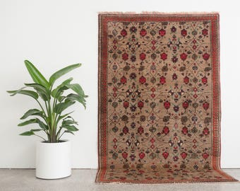 AVGAN 5x8 Hand Knotted Turkish Wool Rug