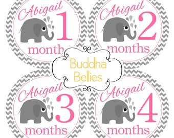 PERSONALIZED Elephant Baby Girl Month Stickers / Pink Grey Elephants / Baby Monthly Stickers - Baby Girl Stickers / Labels - Lil Elephant