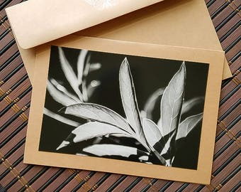 Blank floral photo card Leaves Black and White