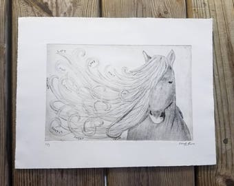 Horse Drypoint Etching Print