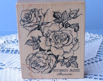 Vintage Flower Rubber Stamp . Hybrid Rose Rosaceae PSX K-1636 1995 . Made in USA . Rose Stamp . Wood Mounted Stamp . Used