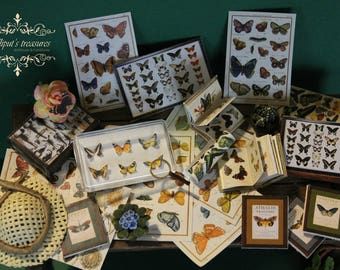 Dollhouse Miniature Wonderful Butterfly Collection