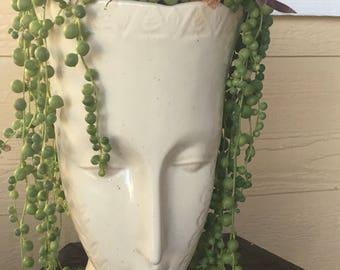 Succulent Head Planter