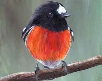 SALE Bird Art Painting Scarlet Robin SFA Wildlife Original hand painted bird acrylic painting by Australian Artist Janet M Graham