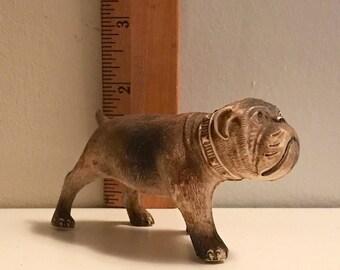 Celluloid English Bulldog Made in the USA