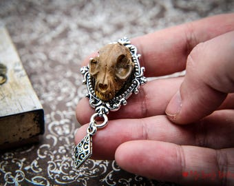 MEMENTO MORI - skull  brooch - choose your favourite one - resin skulls - fake handpainted skulls -animal memento - memento mori - gift box