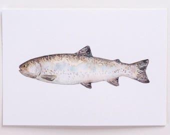 Watercolor Fish Print