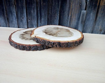 Wood Slices 10
