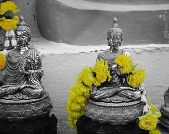 Black and White and Yellow photography // Thailand