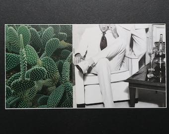 cacti 2 (original collage)