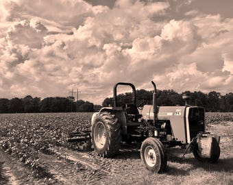 Vintage Massey Ferguson Tractor Photo.Red Tractor. Tractor Photography. Country Rustic. Old Tractor.Digital Download.Printable.Farm.Sepia
