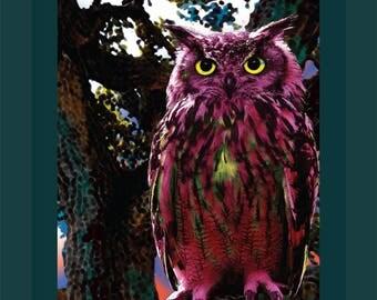 Ruby Owl, Vs. 1, 24 x 30 Art print