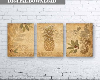 Pineapple Art - Pineapple Printable Art - Sepia Pineapple Art - Kitchen Printable Art. Fruit Kitchen Art. Set of 3. Mediterannian Wall Art.