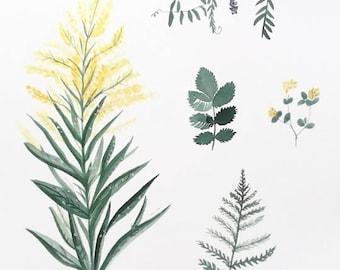 Plant Print, Wildflower Print, Weed Print, Flower Art, Flower Print, Wildflower Painting, Plant Painting, Plant Decor, Foliage Art, Boho Art