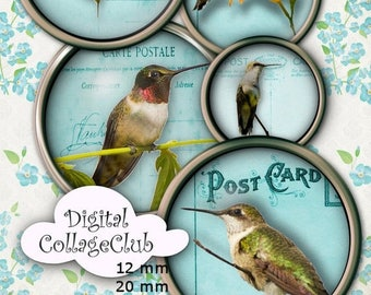 80 % off Graphics SaLe Hummingbirds Figital Collage Sheet 1 Inch (25 mm), 12 mm, 20 mm and 30 mm Digital Images for Jewelry Making, Scrapboo