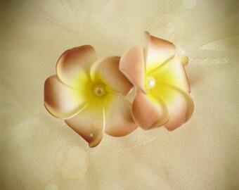 Chocolate hair barrette clip double plumeria flower