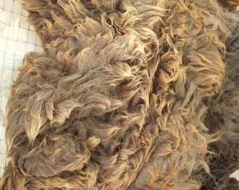 Arrival's fleece