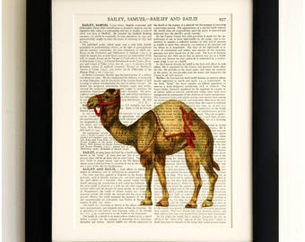 FRAMED ART PRINT on old antique book page - Camel, Vintage Upcycled Wall Art Print Encyclopaedia Dictionary Page